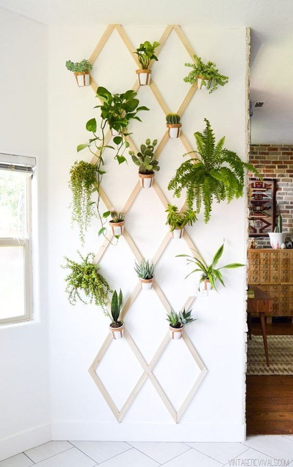 decorate-home-with-plants33