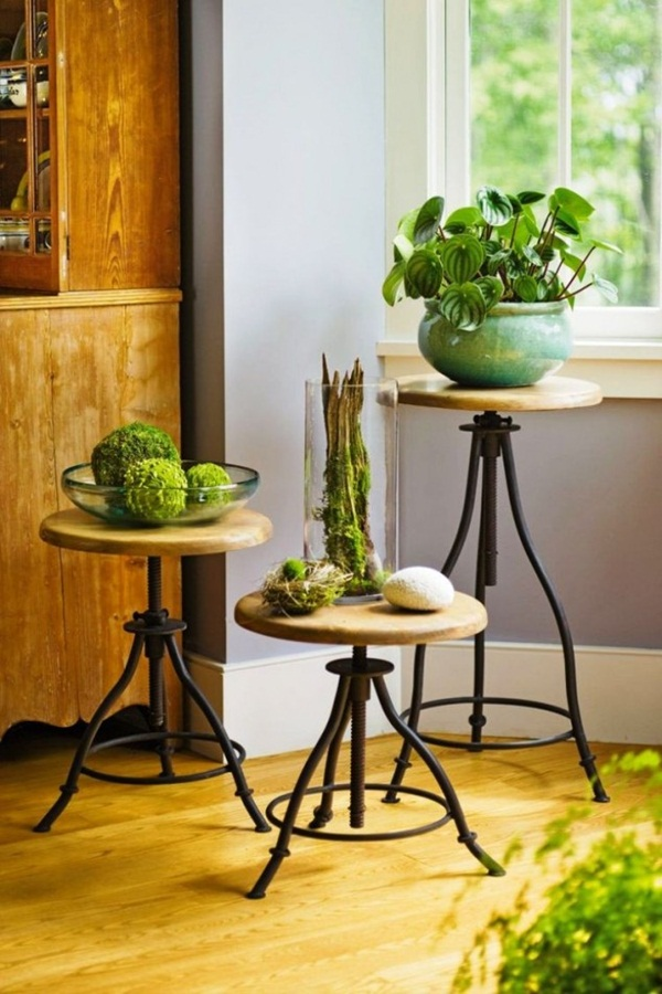 decorate-home-with-plants6