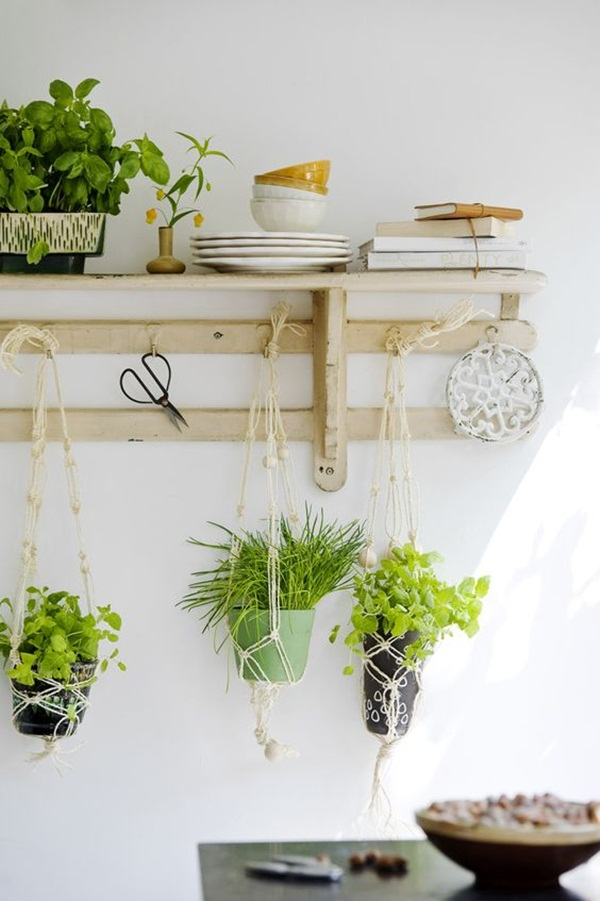 decorate-home-with-plants60