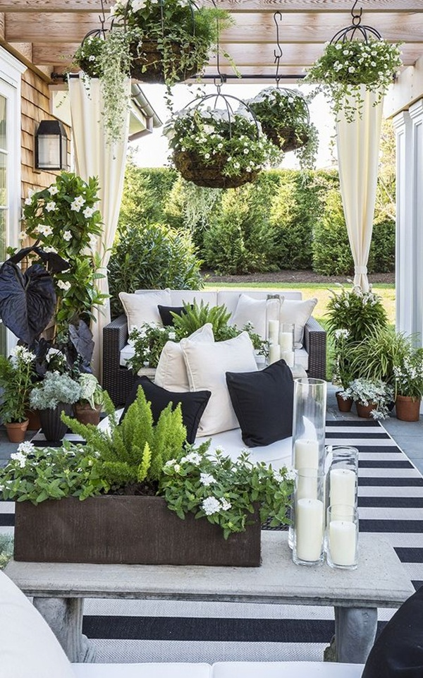 decorate-home-with-plants62