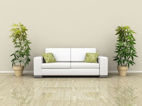 decorate-home-with-plants75